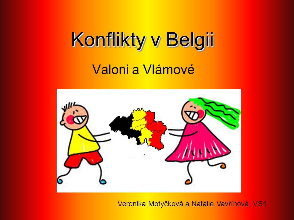 Konflikty v Belgii Valoni a Vlámové