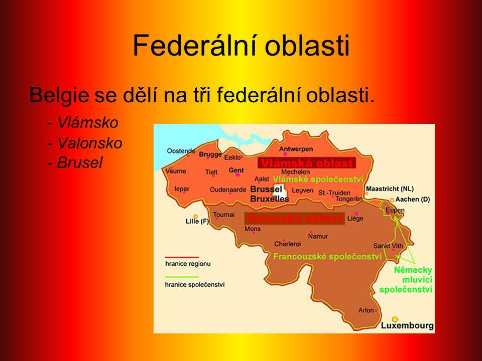 Federální oblasti Belgie se dělí na tři federální oblasti. - Vlámsko