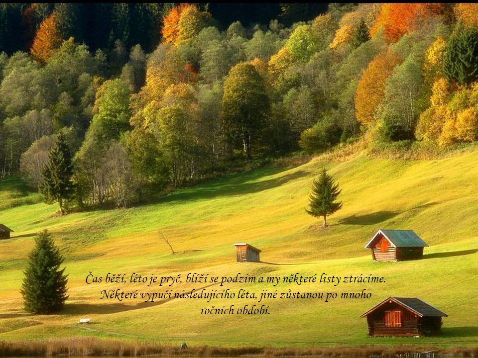 Čas běží, léto je pryč, blíží se podzim a my některé listy ztrácíme