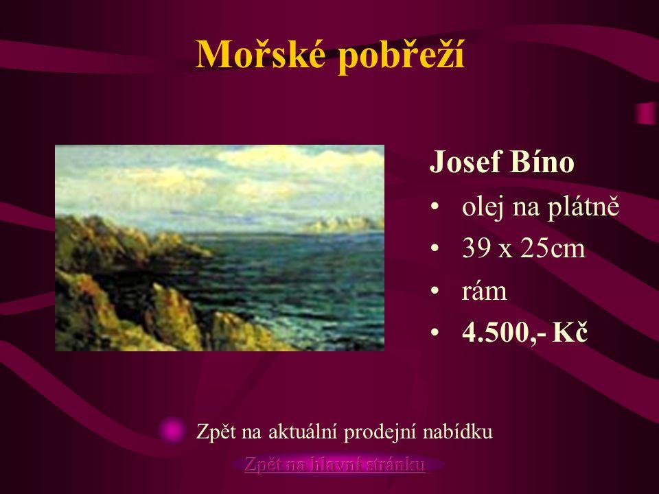 Mořské pobřeží Josef Bíno olej na plátně 39 x 25cm rám 4.500,- Kč