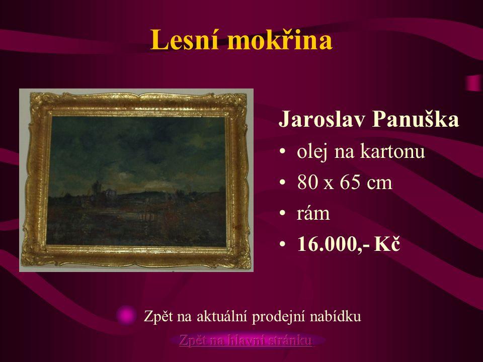 Lesní mokřina Jaroslav Panuška olej na kartonu 80 x 65 cm rám