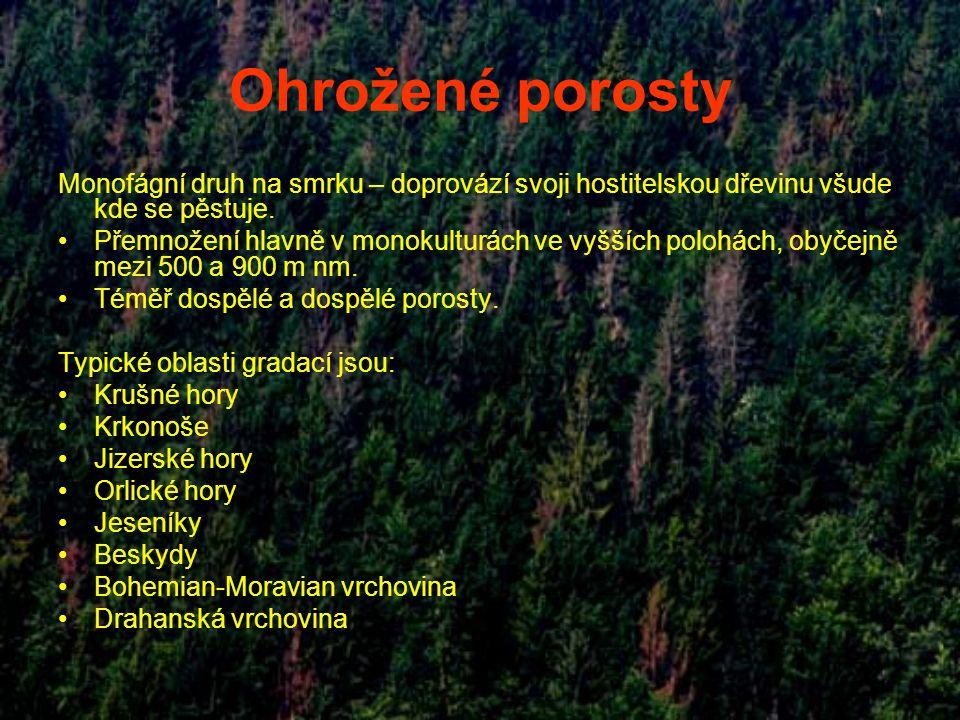 Ohrožené porosty Monofágní druh na smrku – doprovází svoji hostitelskou dřevinu všude kde se pěstuje.