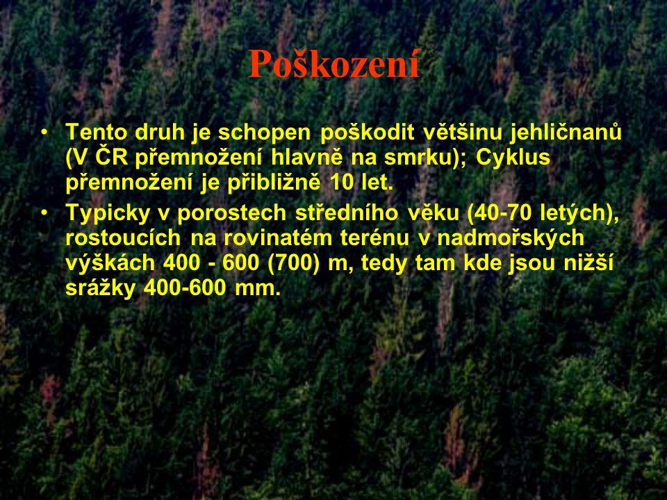 Poškození Tento druh je schopen poškodit většinu jehličnanů (V ČR přemnožení hlavně na smrku); Cyklus přemnožení je přibližně 10 let.