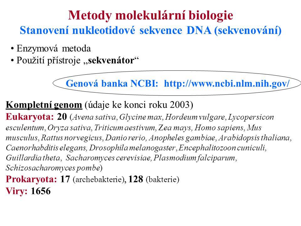 Stanovení nukleotidové sekvence DNA (sekvenování)