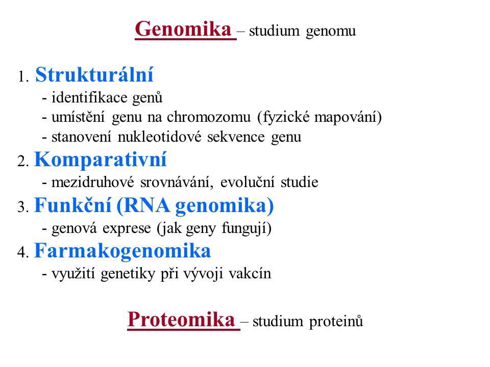 Genomika – studium genomu