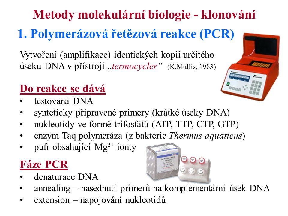 Metody molekulární biologie - klonování