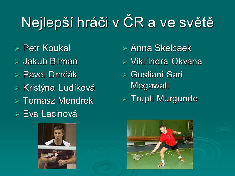 Nejlepší hráči v ČR a ve světě