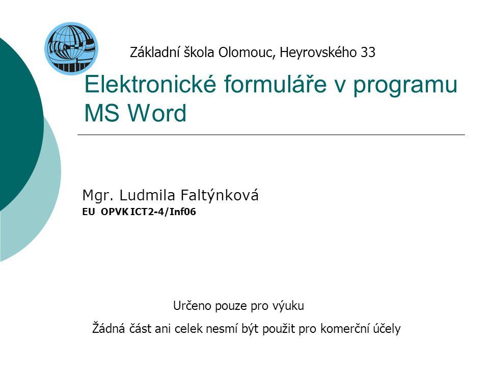 Elektronické formuláře v programu MS Word
