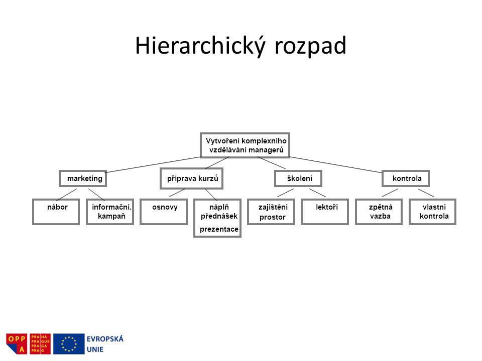 Hierarchický rozpad Vytvoření komplexního vzdělávání managerů