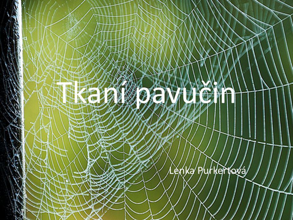 Tkaní pavučin Lenka Purkertová