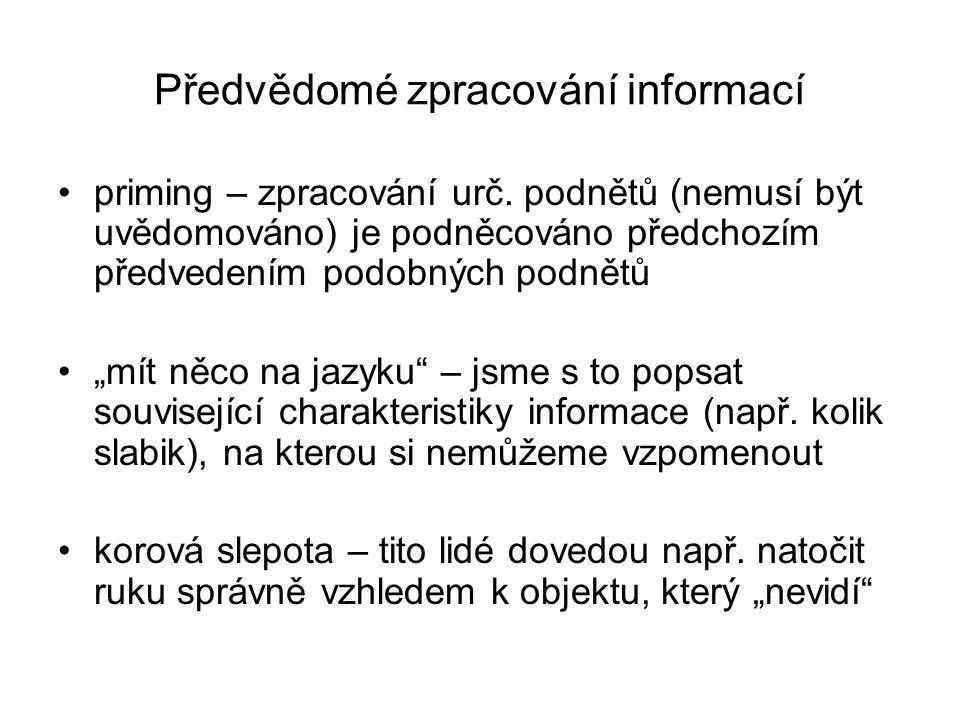 Předvědomé zpracování informací