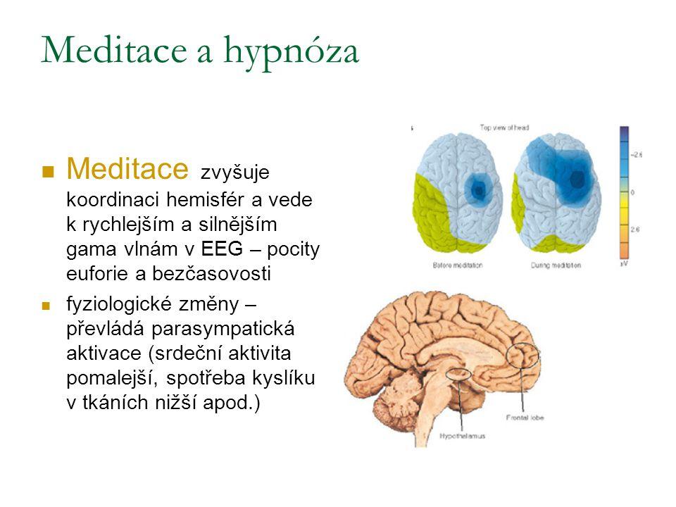 Meditace a hypnóza Meditace zvyšuje koordinaci hemisfér a vede k rychlejším a silnějším gama vlnám v EEG – pocity euforie a bezčasovosti.