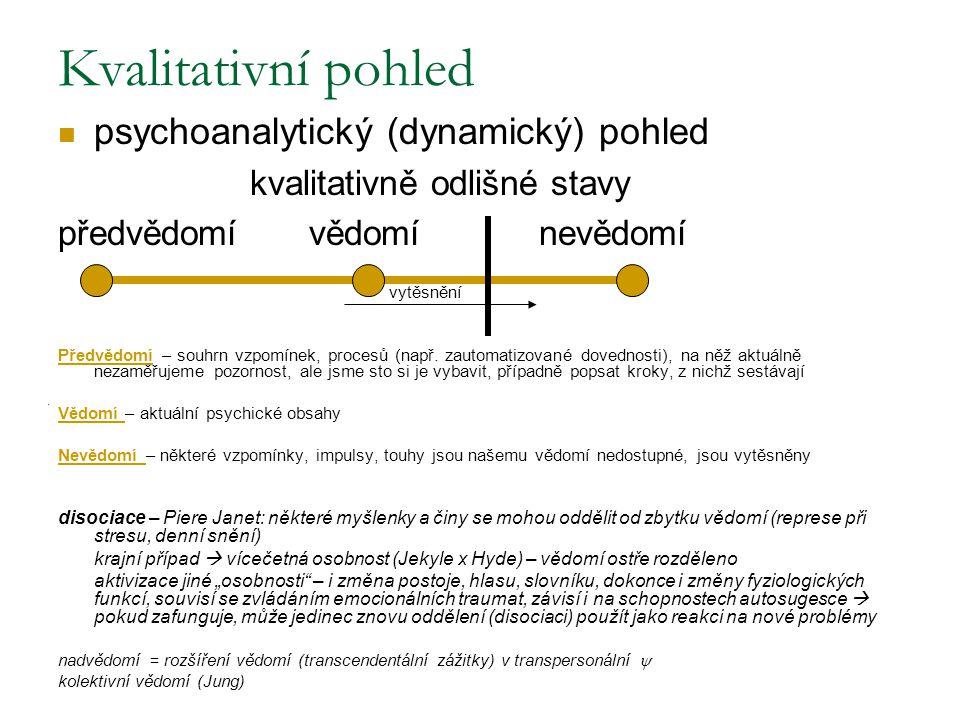 Kvalitativní pohled psychoanalytický (dynamický) pohled