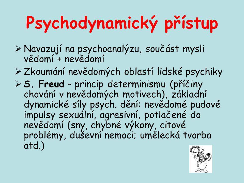 Psychodynamický přístup