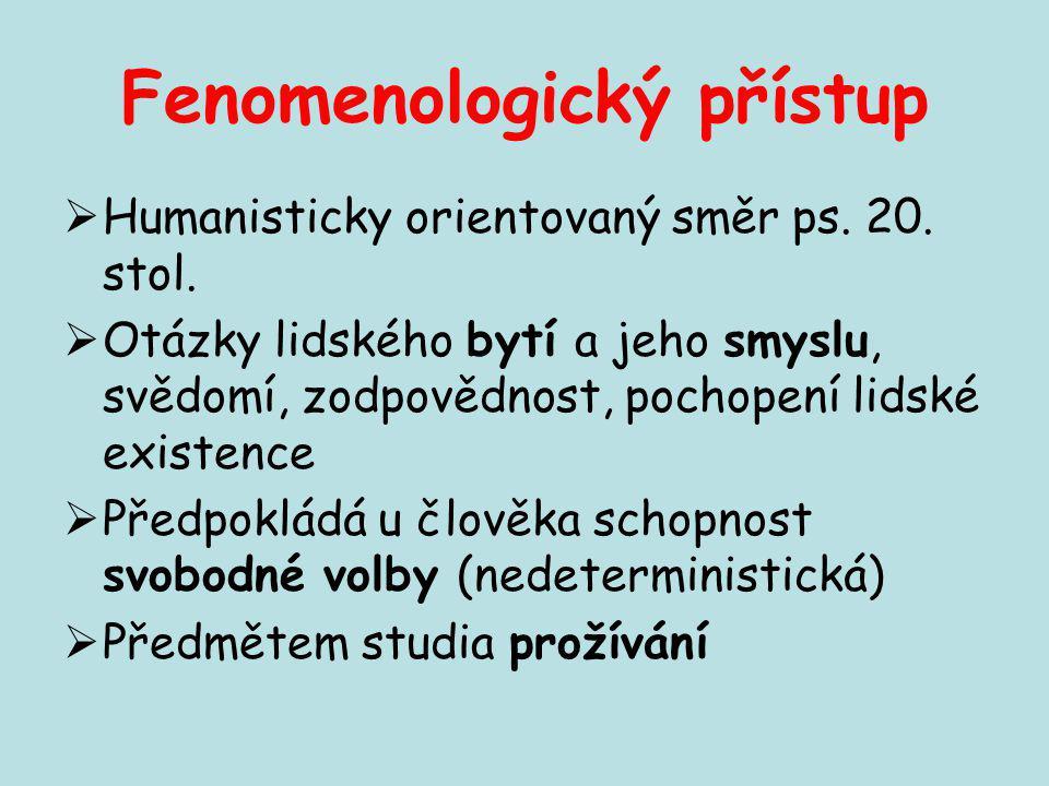 Fenomenologický přístup