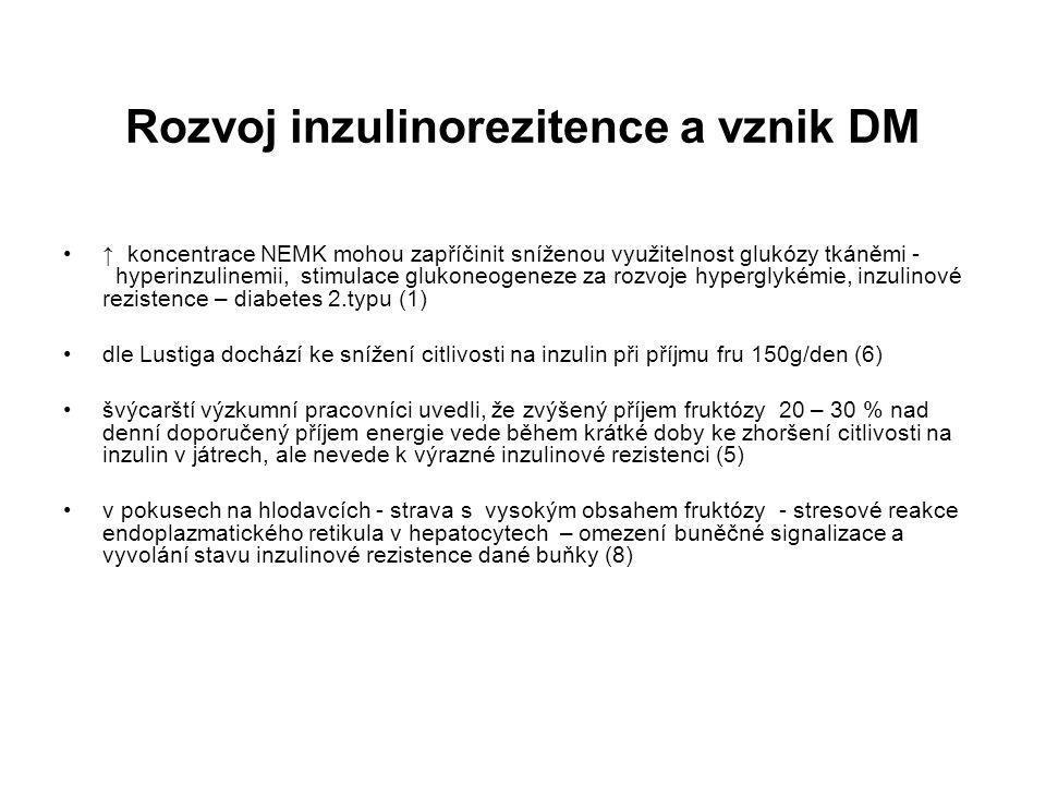 Rozvoj inzulinorezitence a vznik DM