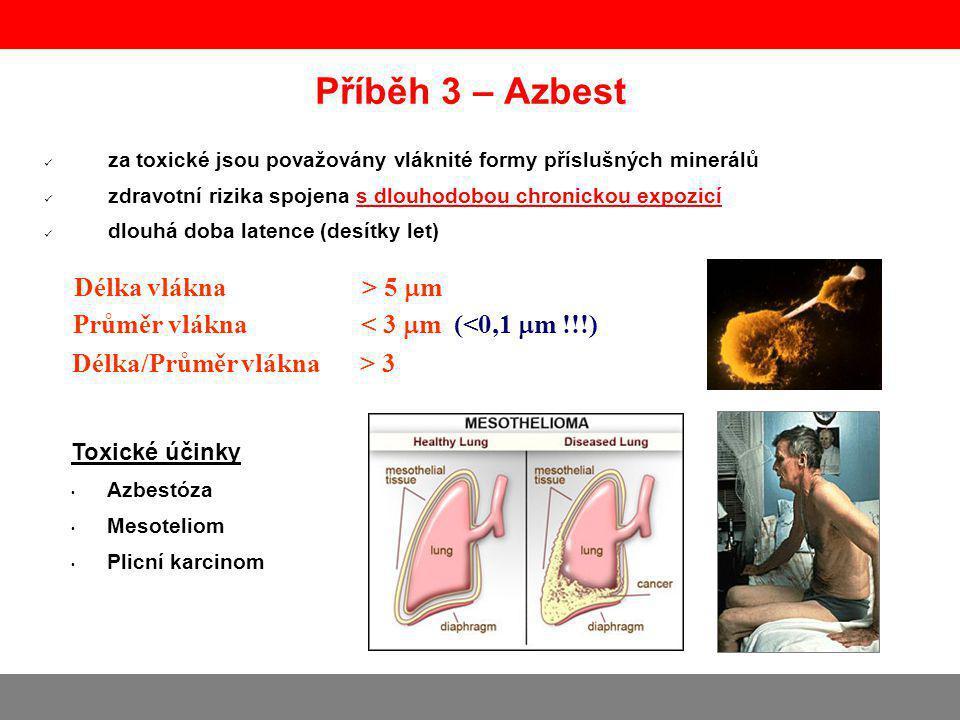 Příběh 3 – Azbest Délka vlákna > 5 m
