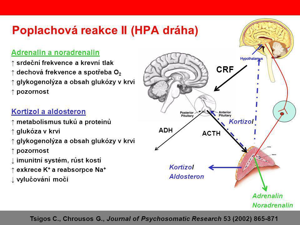 Poplachová reakce II (HPA dráha)