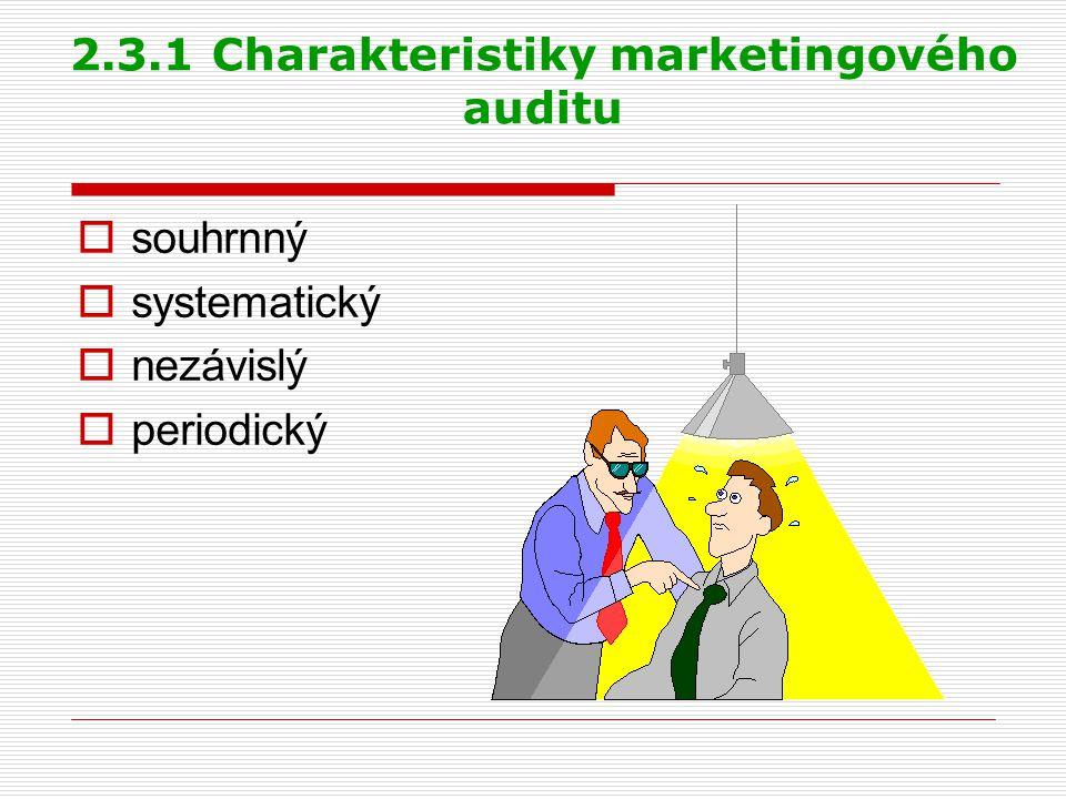 2.3.1 Charakteristiky marketingového auditu