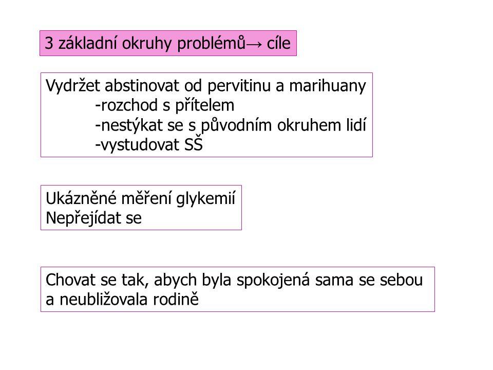 3 základní okruhy problémů→ cíle