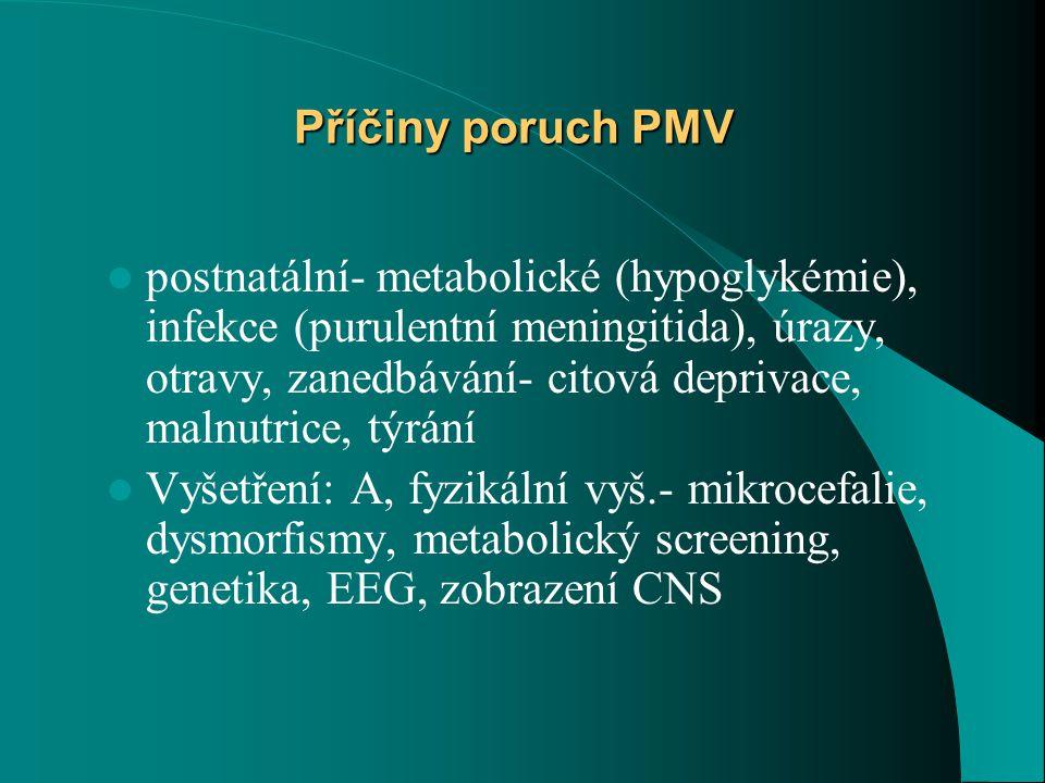 Příčiny poruch PMV
