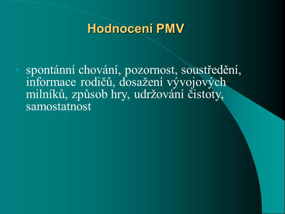 Hodnocení PMV spontánní chování, pozornost, soustředění, informace rodičů, dosažení vývojových milníků, způsob hry, udržování čistoty, samostatnost.