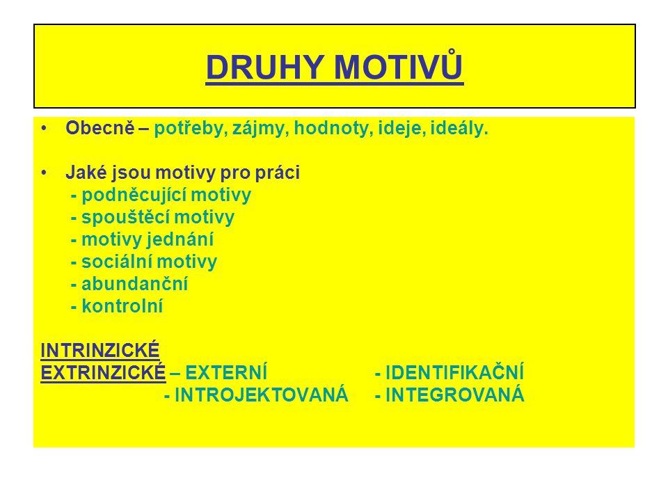 DRUHY MOTIVŮ Obecně – potřeby, zájmy, hodnoty, ideje, ideály.