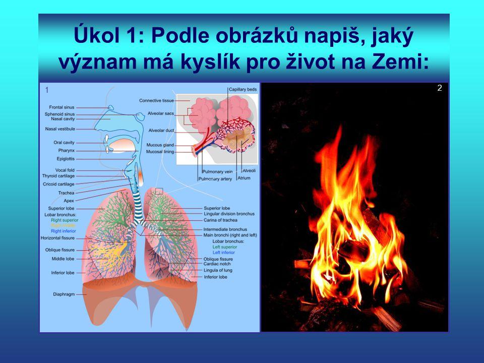 Úkol 1: Podle obrázků napiš, jaký význam má kyslík pro život na Zemi: