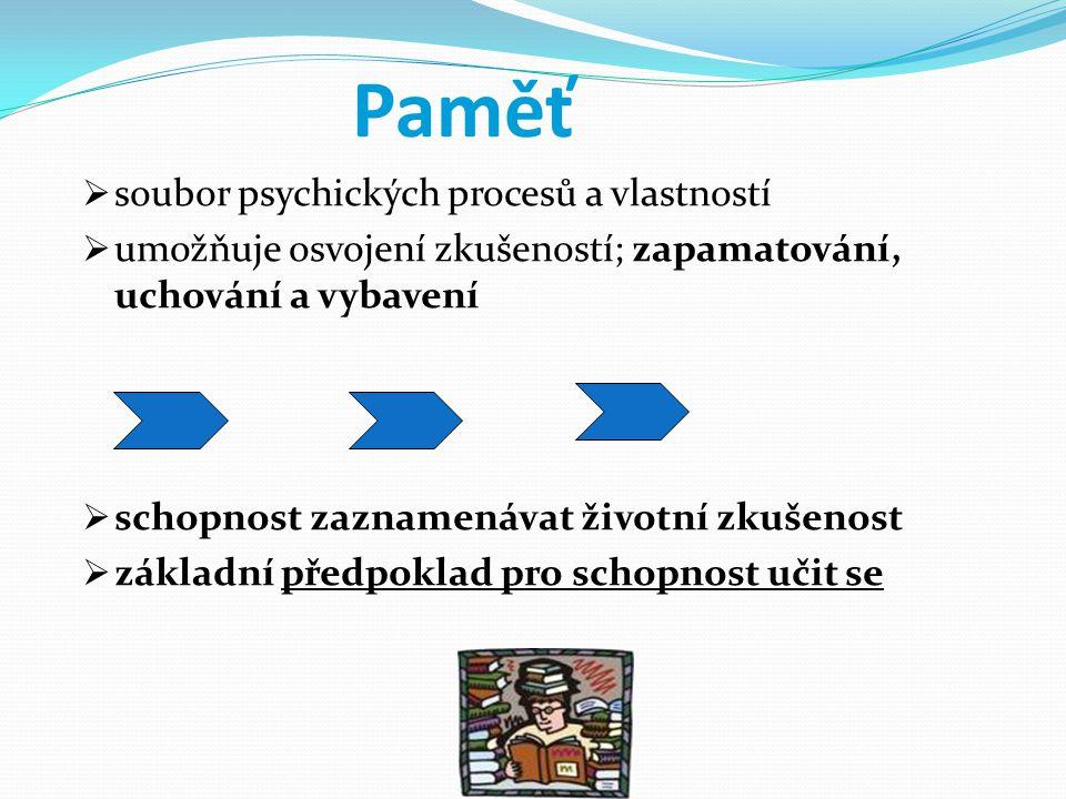 Paměť soubor psychických procesů a vlastností