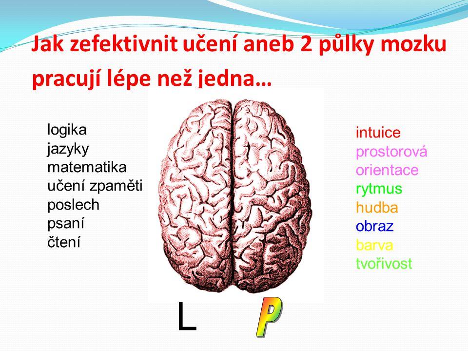 Jak zefektivnit učení aneb 2 půlky mozku pracují lépe než jedna…
