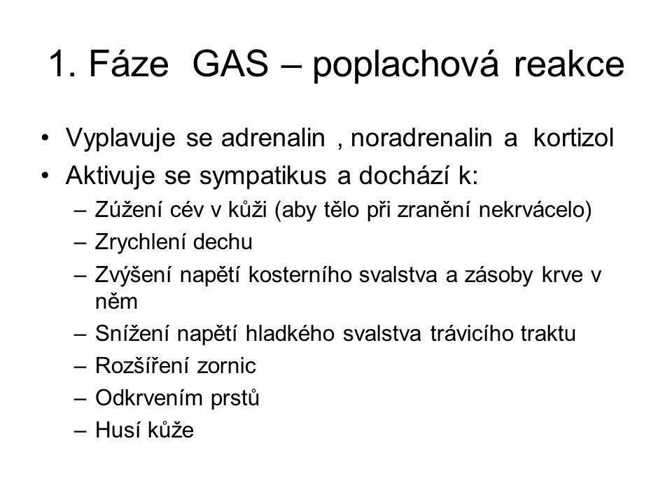 1. Fáze GAS – poplachová reakce