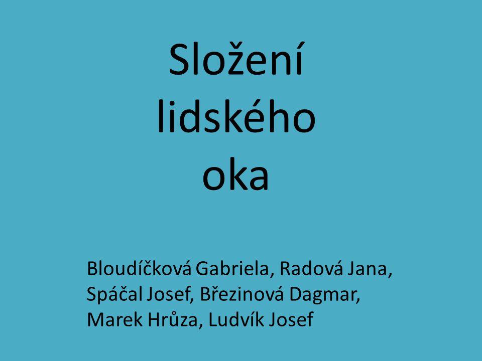 Složení lidského oka Bloudíčková Gabriela, Radová Jana, Spáčal Josef, Březinová Dagmar, Marek Hrůza, Ludvík Josef.