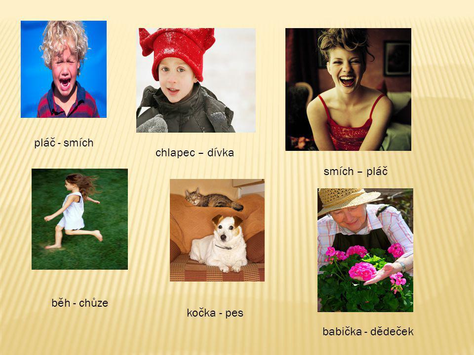pláč - smích chlapec – dívka smích – pláč běh - chůze kočka - pes babička - dědeček