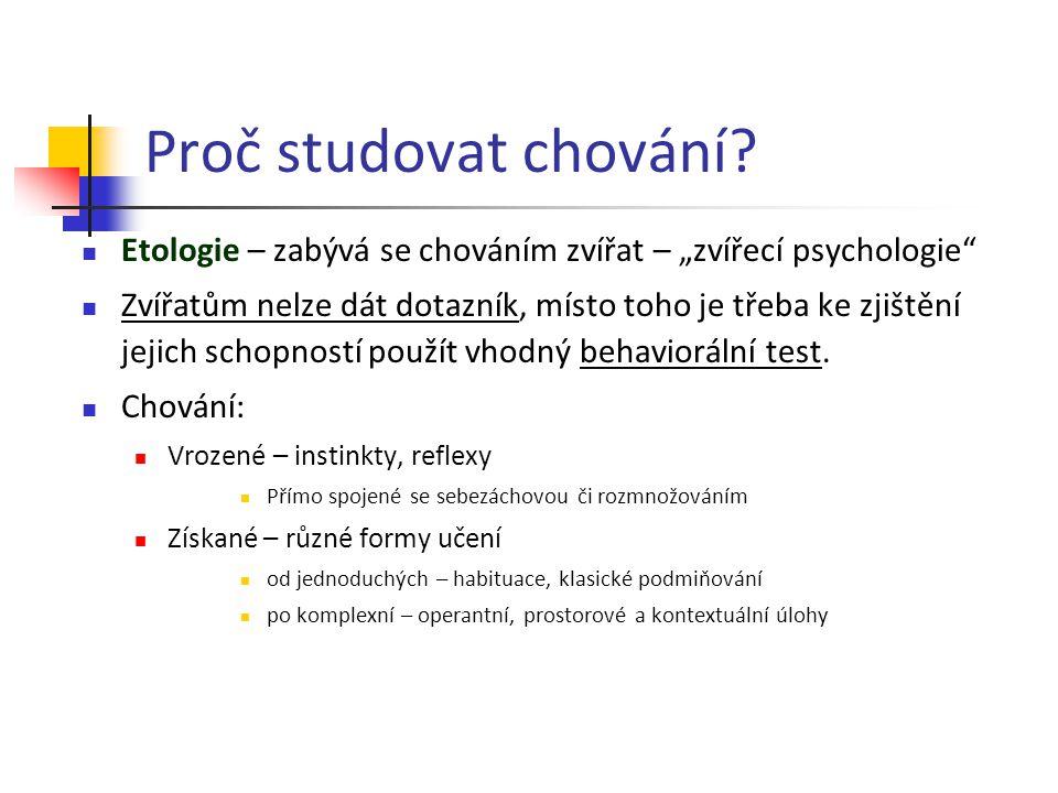 """Proč studovat chování Etologie – zabývá se chováním zvířat – """"zvířecí psychologie"""