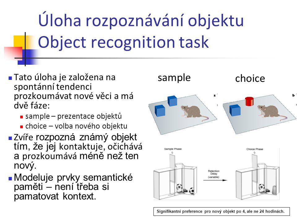 Úloha rozpoznávání objektu Object recognition task