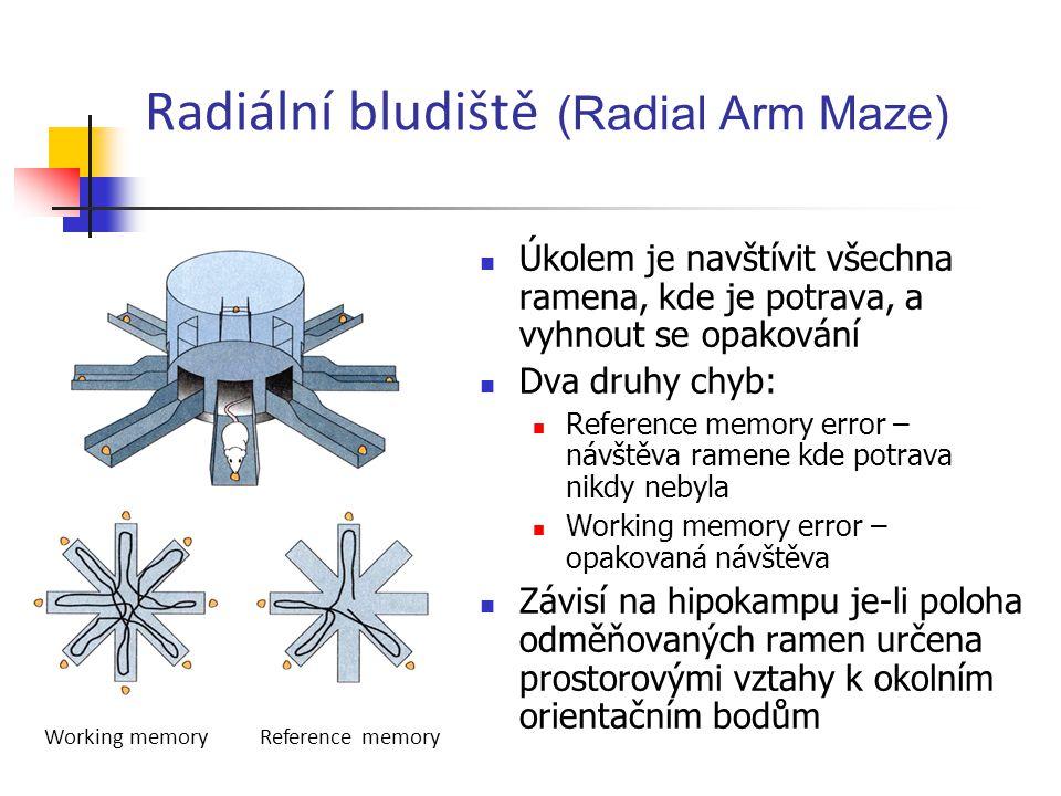 Radiální bludiště (Radial Arm Maze)