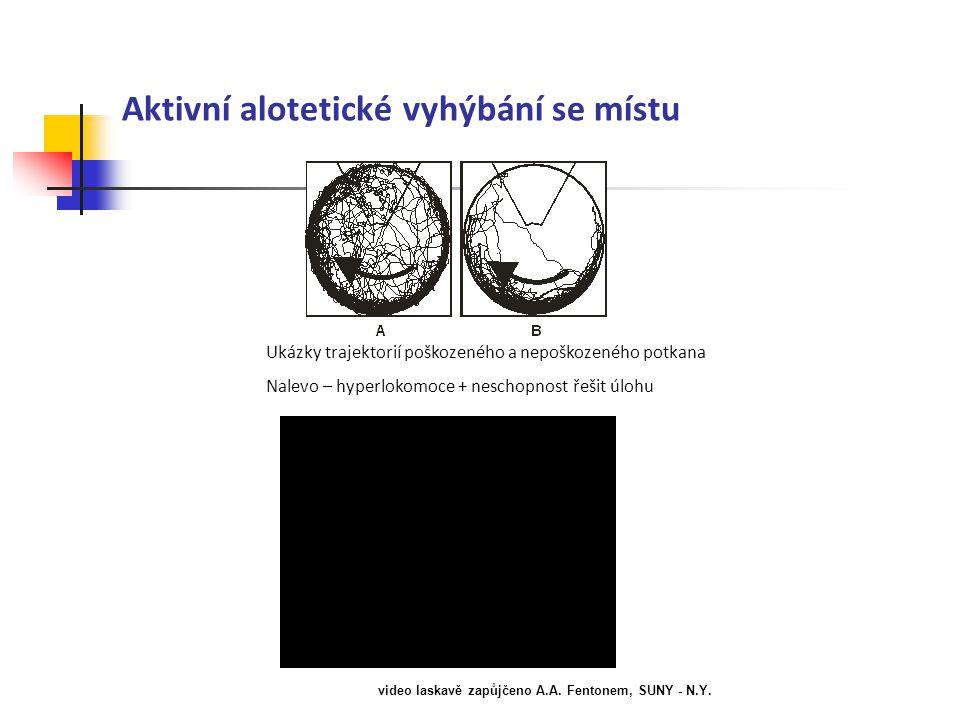 Aktivní alotetické vyhýbání se místu