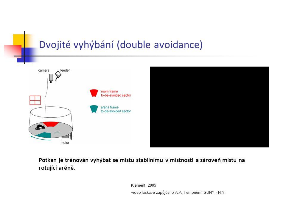 Dvojité vyhýbání (double avoidance)