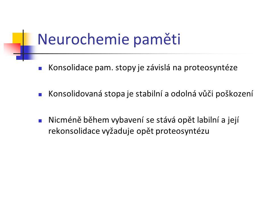 Neurochemie paměti Konsolidace pam. stopy je závislá na proteosyntéze