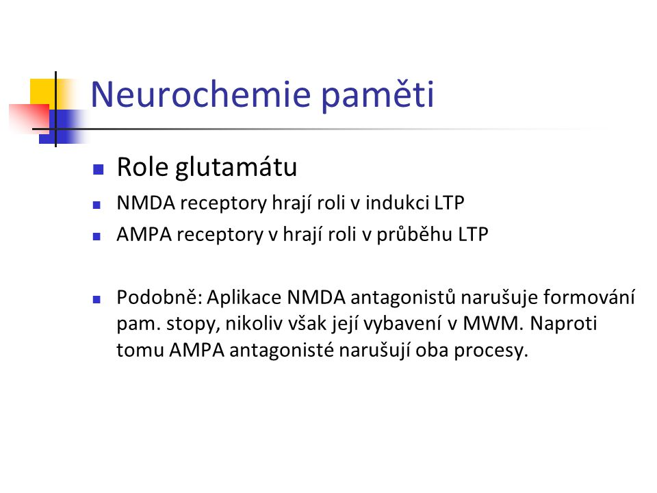 Neurochemie paměti Role glutamátu