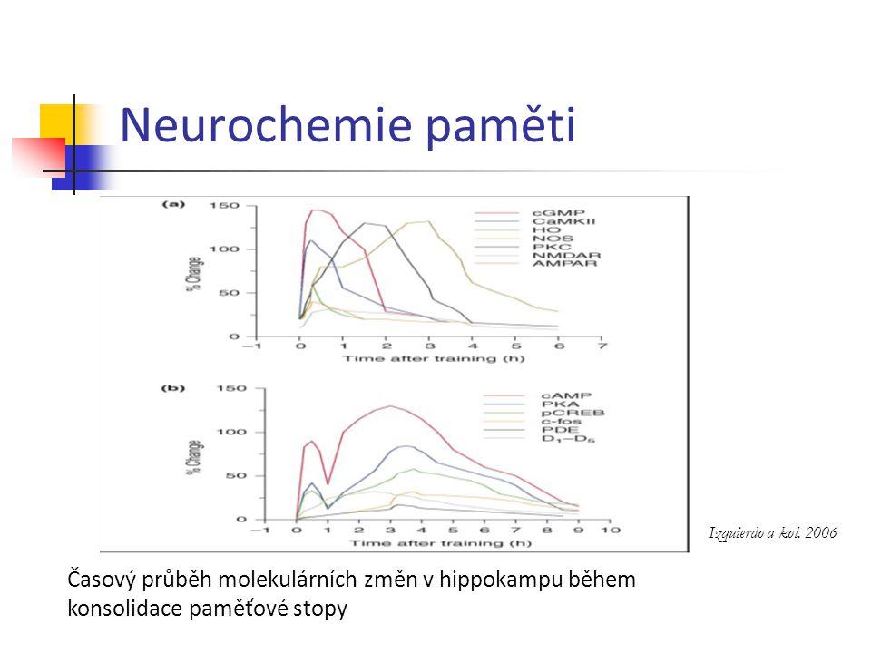 Neurochemie paměti Izquierdo a kol. 2006.
