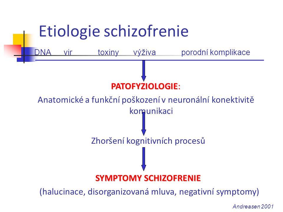 Etiologie schizofrenie