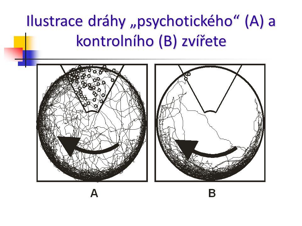 """Ilustrace dráhy """"psychotického (A) a kontrolního (B) zvířete"""