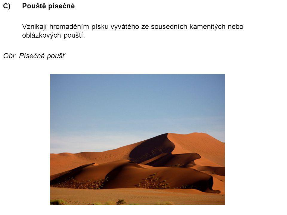 Pouště písečné Vznikají hromaděním písku vyvátého ze sousedních kamenitých nebo oblázkových pouští.