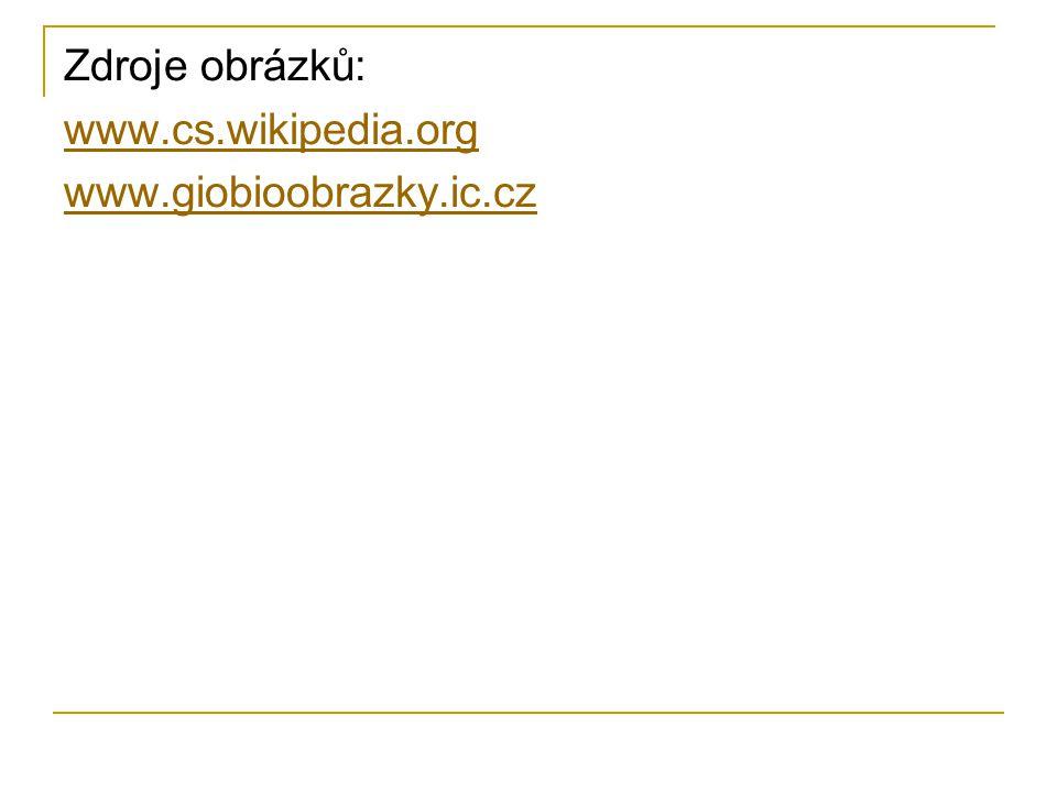 Zdroje obrázků: www.cs.wikipedia.org www.giobioobrazky.ic.cz