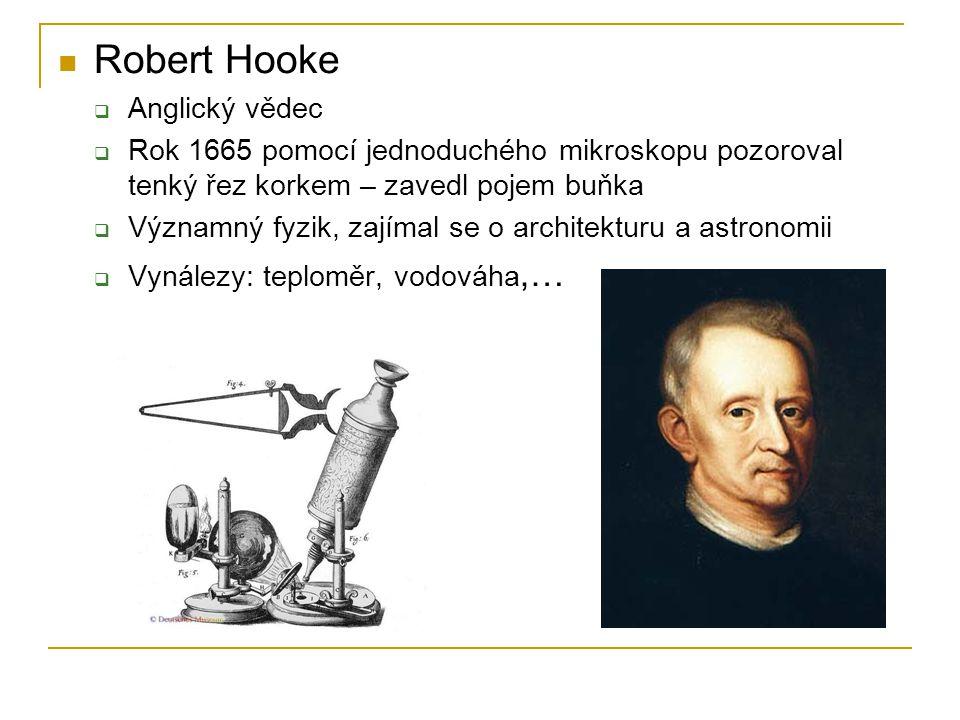 Robert Hooke Anglický vědec