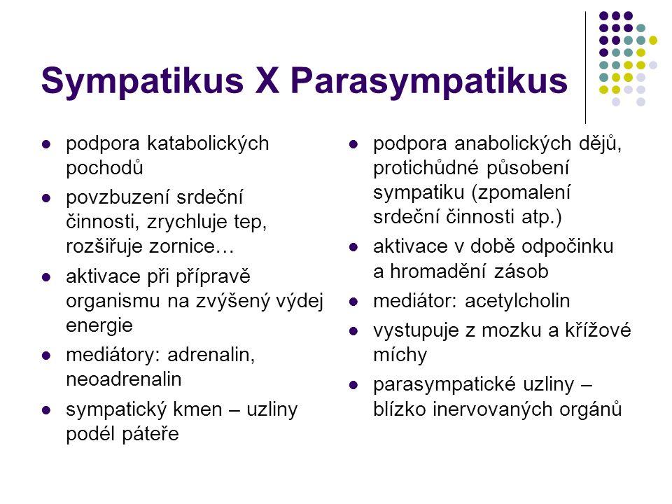 Sympatikus X Parasympatikus