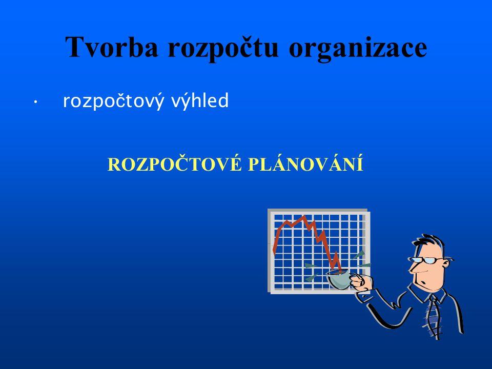 Tvorba rozpočtu organizace