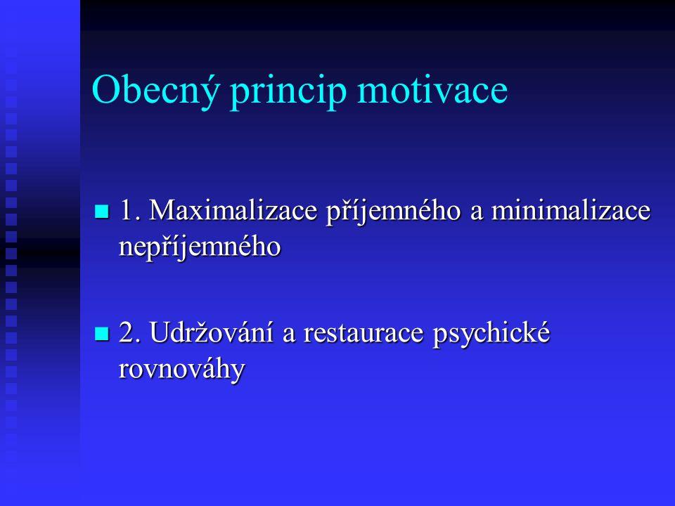 Obecný princip motivace