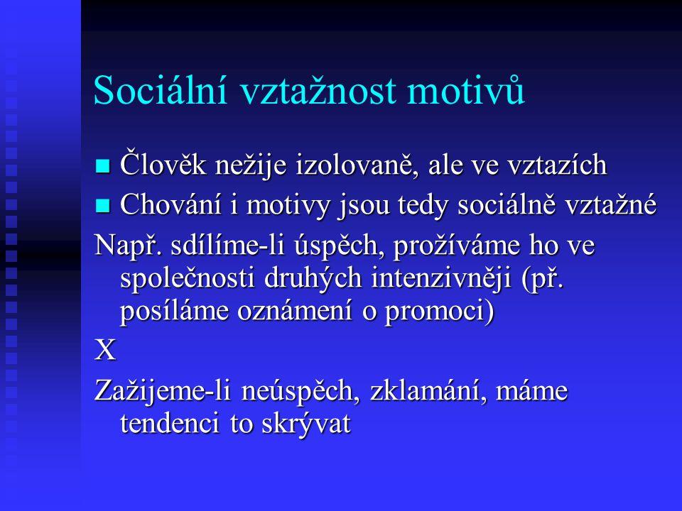 Sociální vztažnost motivů